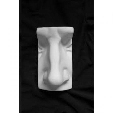 Анатомические детали. «Нос Давида», 14 см*24 см.