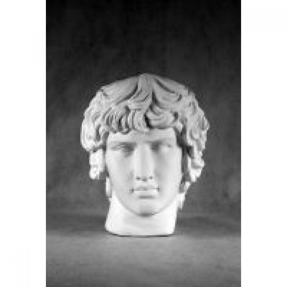 Гипсовая модель голова «Антиной»