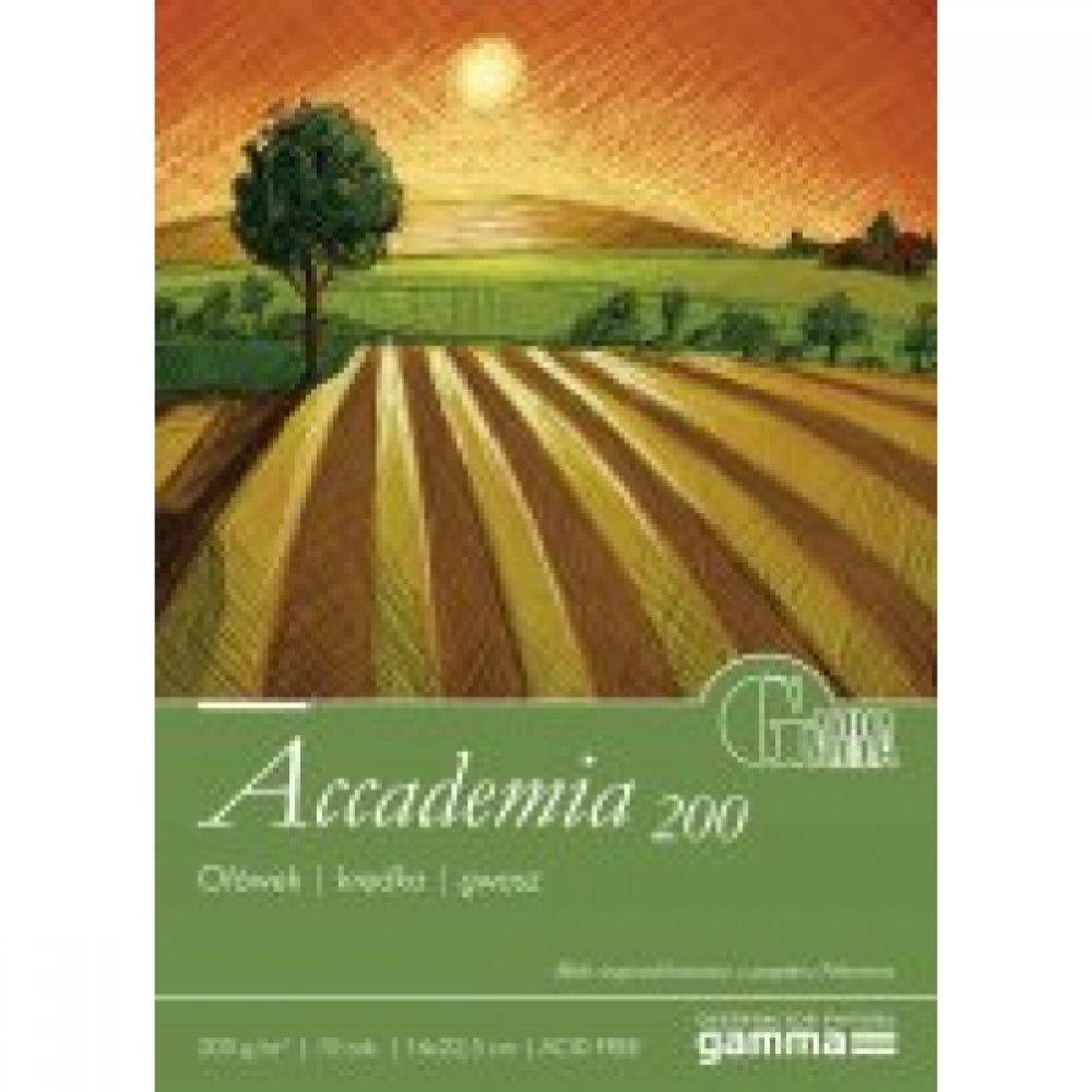 Cклейка для рисования GAMMA Accademia 16 x 22,5 40л 200г / м (проклийка 1бик)