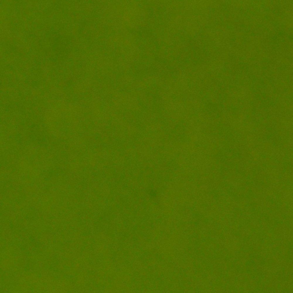Фетр жорсткий, салатовий, 21 * 30см